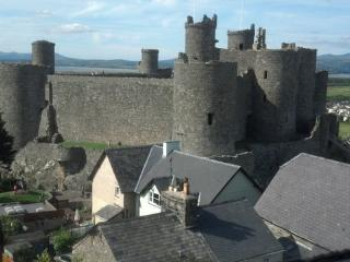 Harlech Castle from living room window!!