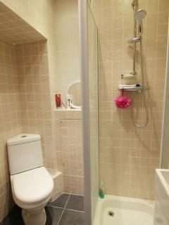 the downstairs loo and shower