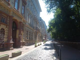 Nice walking street, opposite the studio1s entrance door
