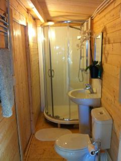 the modern shower room