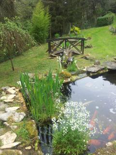 Les bassins avec des carpes koî de la propriété