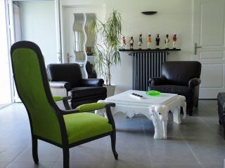 Appart 3*  avec Jardin + Parkg, Avignon