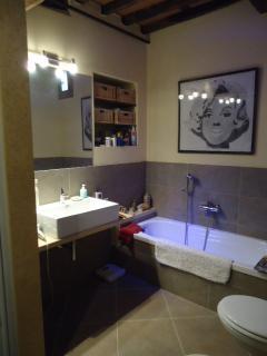 Bathroom on lower level