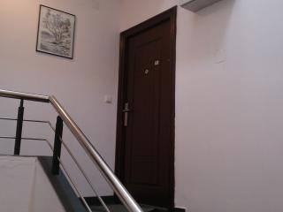 Stairs and entrance door to the apartment.