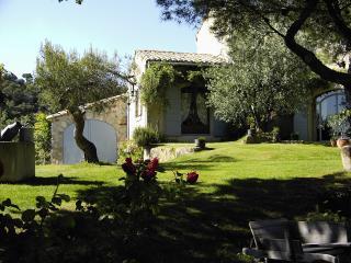 Le Serre de Champlong, Vaison-la-Romaine