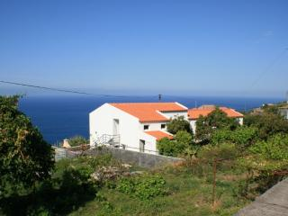Naty and Chicos house cottage, Arco da Calheta