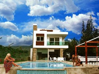 Modern villa w  pool &best mountain view in Dalyan
