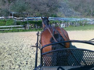Ranch la Valle, Arcidosso