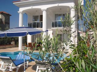 Villa Blue-Pine