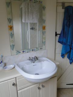 Modern, sunny shower room and loo.