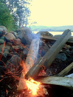 Camp fire on beech