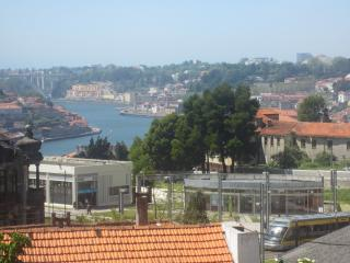 Apt Gaia/Porto - sleeps 4 - free parking - subway