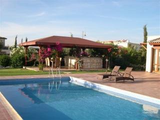 VILLA YERANI - APHRODITE HILLS. With heated pool