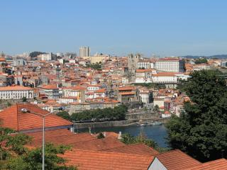 Port Wine - Sunny & Cozy flat of 2bed 2 bath, Vila Nova de Gaia
