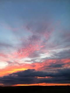 A spring night sky over farm