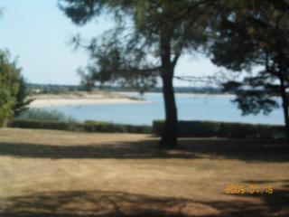 vue plage jardin