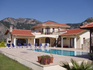 Plantation villa in natural countryside., Dalyan