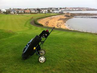 View from the golf course, looking back towards Anstruther