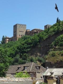 One of the many views of the Alhambra from the Albaycín