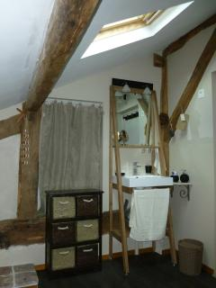 the shower room-timbered