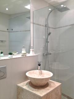 Spacious bathroom with walk in raindrop shower