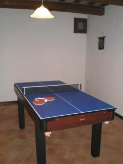 Anyone for table tennis