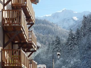 Mountain Maison large ski chalet Les Arcs