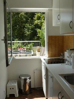 Une belle cuisine intégrée avec sa fenêtre donnant sur la terrasse et le parc