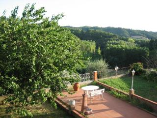 The common garden, nice to have a sunbath when the sun shines... happens quite often in Tuscany