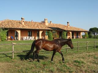 Villa Conchetta - La Villa