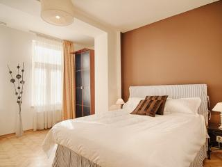 Sunny Upscale flat in center, Prague