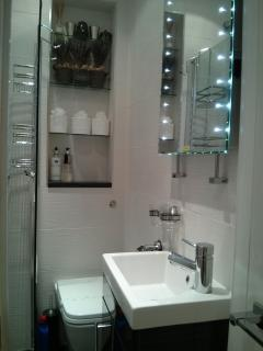Ensuite shower WC
