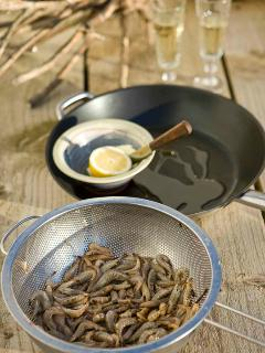 brown shrimp caught on beach then fried on BBQ- try your luck, net in the garden!!!