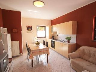 apartments Daniela - 4 persons, Novigrad