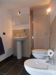 Modern and stylish bathroom with shower, toilet, sink and bidet.