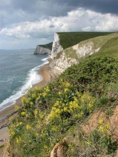 The Heritage coast, Dorset