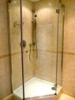 brand new luxury shower room