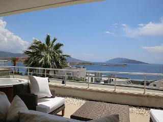 252- 4 Bed Luxury Villa Gumbet
