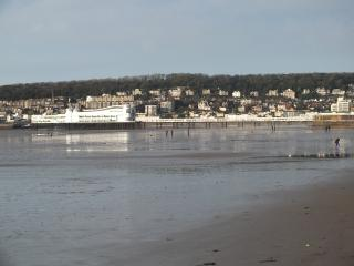Sea Drift, Weston super Mare