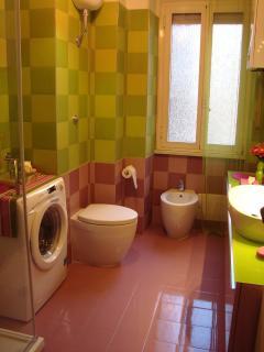 the bathroom (washing machine)