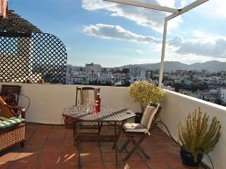 One Bedroom Penthouse Nerja
