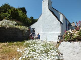 Hall Cottage ref: 2102, St Ishmaels