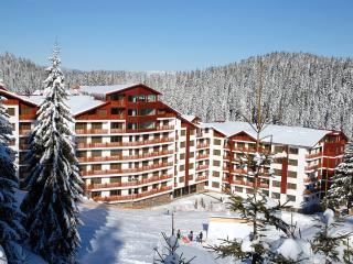 Two bedroom apartments in Pamporovo
