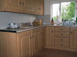 Kitchen - fridge, freezer, dishwasher, electric cooker, WM, microwave, blender, toaster