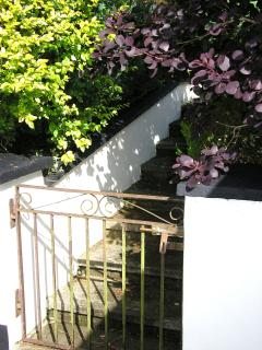 Gate & steps to open lawn