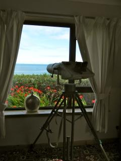 Whale and dolphin watching binoculars!