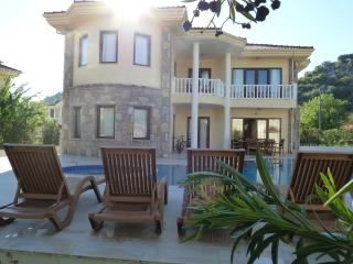 Villa Palmiye, Dalyan