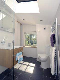 Solva holiday cottage - wet room