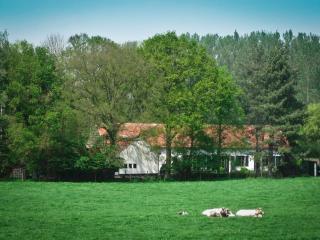 Geestmolenhof, Holsbeek