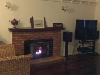 lounge room - slow combustion wood fire